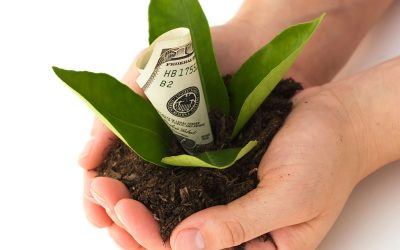 The Fundamentals of Fundraising